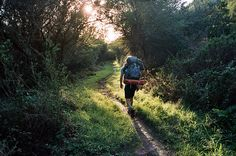 to be in nature :) pic:hike / andrew kodama Get Outdoors, The Great Outdoors, Victor Hugo, Camping Needs, Country Walk, I Want To Travel, Going Home, Outdoor Life, Pilgrimage