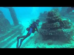 Scuba diving with  shake a leg miami Neptune memorial 52 foot dive for 1 hour and 30 mints. - http://www.florida-scubadiving.com/florida-scuba-diving/scuba-diving-with-shake-a-leg-miami-neptune-memorial-52-foot-dive-for-1-hour-and-30-mints/