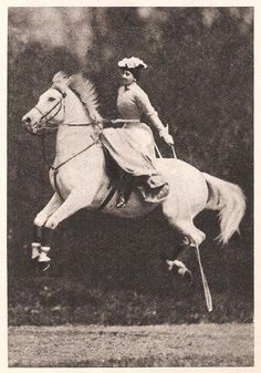 Horses in History: Therese Renz, Equine Circus Performer Extraordinaire Vintage Circus Photos, Renz, Antique Pictures, Vintage Horse, Horse Photos, White Horses, Horse Breeds, Grafik Design, Horse Art