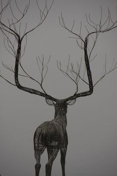 Byeong Doo Moon. I Have Been Dreaming to be a Tree.