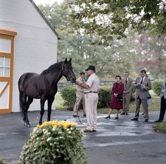 Tony Leonard's photo of the Queen meeting Mr Prospector. He looks black here I thought he was bay. Are we sure this is Mr Prospector? Farm Pictures, Horse Pictures, King Horse, Sport Of Kings, Thoroughbred Horse, Looks Black, All The Pretty Horses, Horse Farms, Horse Racing