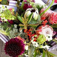 Bulb Flowers (@bulbflowers_ct) • Instagram photos and videos Bulb Flowers, Bouquets, Floral Wreath, Wreaths, Photo And Video, Day, Videos, Photos, Instagram