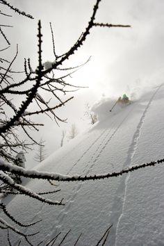 Powder day!!! - North Cascades, WA