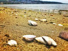 #sea #deniz #istanbul 🇹🇷