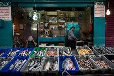 Fish, Acre