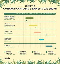 Outdoor Cannabis Grower's Calendar Growing Calendar for Outdoor Cannabis Cannabis Cultivation, Cannabis Plant, Cannabis Oil, Ganja, Marijuana Facts, Cannabis Growing, Medical Cannabis, Gardening, Gardens