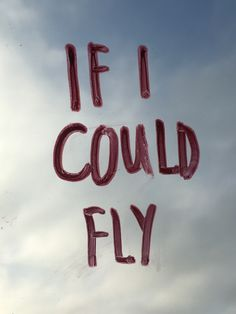 If I could fly.... One Direction
