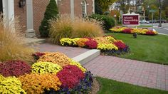 Ensuring you get the desired look for your yard is why it's important to do your homework when choosing your commercial landscaping company.