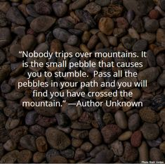 Nobody trips over mountains. It is the small pebble that causes you to stumble. Pass all the pebbles in your path, and you will find you have crossed the mountain. -Author Unknown