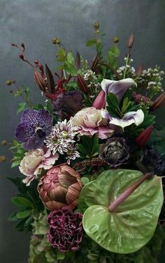 Sanjana v singh – Flowers Flowers Art Floral, Deco Floral, Floral Artwork, Ikebana, Exotic Flowers, Beautiful Flowers, Cactus Y Suculentas, Floral Bouquets, Flower Photos
