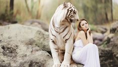 Nature, Animal World, White Bengal Tiger Images , Photos , Free Stock Images Powerful Morning Prayer, Good Morning Prayer, Morning Prayers, Female Hormone Imbalance, White Bengal Tiger, Whatsapp Videos, Whatsapp Group, Fitness Motivation, Photo Chat