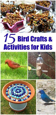 15 Outdoor Activities: Birds crafts & nature activities for kids | backyard habitats