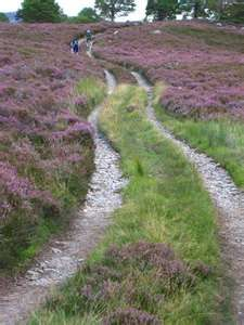 Fields of Heather on the Burma Road