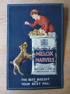 Sign Writer, Irish Terrier, Miniature Dogs, Best Pal, Painted Metal, Dog Biscuits, Old Signs, Advertising Signs, Cool Fonts