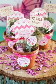 12.Gardening really goes into a deeper hand in hand opportunity to ideas of decorating and improving kits. This will be suitable for any climate and will provide a marked crop system for the fairy garden.