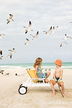 Seagull Attack! lol