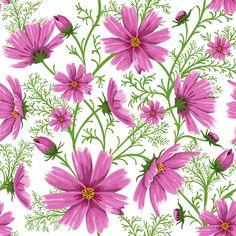 Fondos florales transparente.