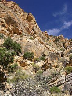 Tanner Trail-Grand Canyon N.P.