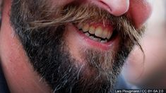 Study: Men with beards carry more germs than dogs do WSET beard p - Beard Bob Hairstyles For Thick, Wig Hairstyles, Dark Red Ombre, Ombre Bob Hair, Dog Test, Ombre Hair Extensions, Bouncy Curls, Braids For Short Hair, Doll Hair