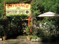 Mystery Spot Santa Cruz I have never been here