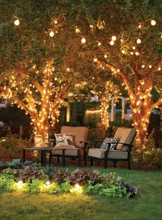 With proper deck lighting, your deck will look gorgeous. Here we have deck lighting ideas to lighten up your deck Outdoor Tree Lighting, Outdoor Trees, Backyard Lighting, Outdoor Gardens, Garden Lighting Ideas, Lights In Garden, Lights In Backyard, String Lights Outdoor, Fairy Lights