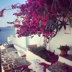 #faros #sifnos #cyclades #vacances