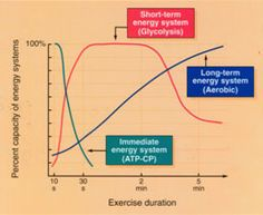 How the body uses energy- VERY good information even for athletes' everyday use!   (Energy Graph for performance training)