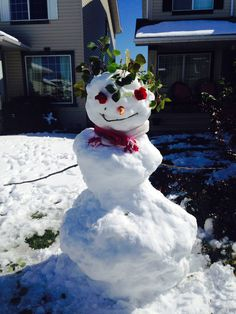 Snow man with roses for eyes