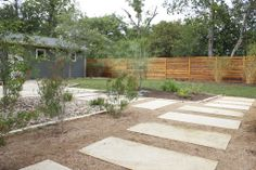 Drought resistant/native perennial bed. Perfect for this Texas drought!