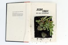 punk projects: Recycled Book Planter DIY