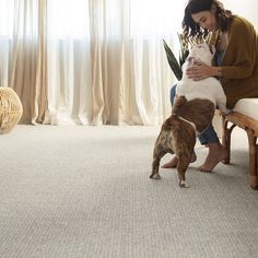 Pet friendly carpet is a must for pet owners everywhere! Our Fetch Pet Friendly Carpet in Briarwood is the ideal neutral carpet choice for living rooms! Starting at $3.69 SQ FT It's built to resist pet hair and fading to keep your carpets looking beautiful as the years come and go!