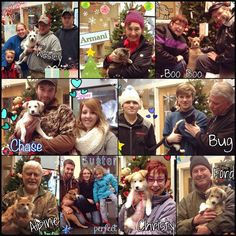 So many happily forever afters here at the shelter!