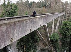 kingsgate bridge durham - Google Search