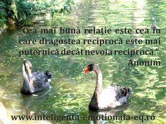 """""""Cea mai bună relație este cea în care dragostea reciprocă este mai puternică decât nevoia reciprocă.""""Anonim"""
