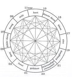 MERIDIAANWIEL - Biologische klok - Natuurgeneeskunde - Boxtel