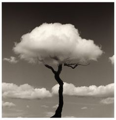 Chema Madoz best-of-pinterest-photographers