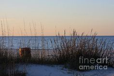 Gulf Breeze! By: Photography By Jeff Monk1