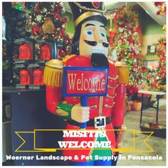 We have an incredible selection of #ornaments, #wreaths, Christmas collectables, nativity scenes, life size decorations, lights, ribbon, garland and more! #Woerner #Pensacola