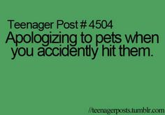 I do that all the time. I feel so bad when I hit an animal
