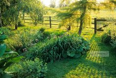 Howard Rice Garden Photography