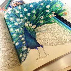 Apaixonada pelo meu Paraíso Tropical - Millie Marotta - Editora Sextante #editorasextante #lápisdecor #livrosdecolorir…
