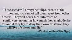 Paulo Coelho The Spy Quotes : 22 Mata Hari Courageous Lessons #Inspirational #motivational #SocialMedia #Quotes #Paulocoelho #TheSpy