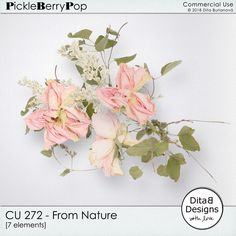 DitaB Designs: NEW CU 272 - 274  FROM NATURE 30% OFF