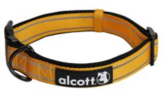 What's a better way to #travel in style with your #dog this summer than with Alcott's adventure collar? #summer #dog #adventure #journey #outdoor