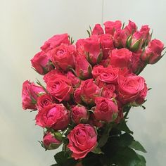Roses from Dounan Kunming China, Chinaflower214 flowers