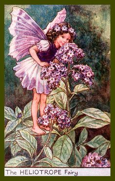 The Heliotrope Fairy by Cicely Mary Barker from the 1920s. Quilt Block of vintage fairy image printed on cotton. Ready to sew.  Single 4x6 block $4.95. Set of 4 blocks with pattern $17.95.