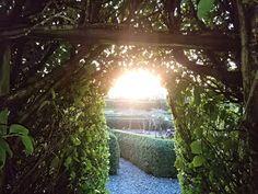 Sun rising over the Vegetable Garden @kilmokeacountrymanor