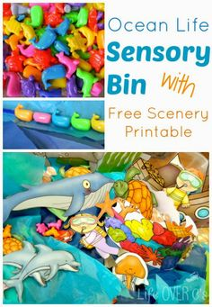 Ocean Life Sensory Bin with Free Printable Scenery