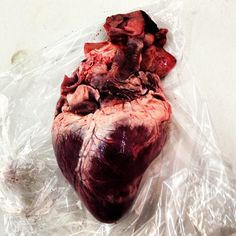 Real heart. Red blood.
