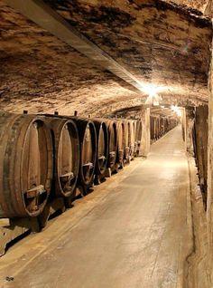 Wineries in Wurzburg, Germany